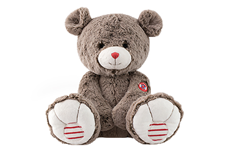 The Announcement Package also includes an adorable premium quality teddy bear